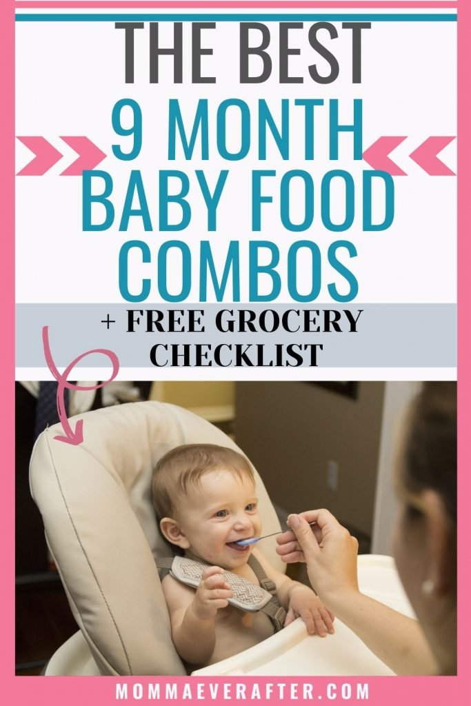 9 month old baby food combinations
